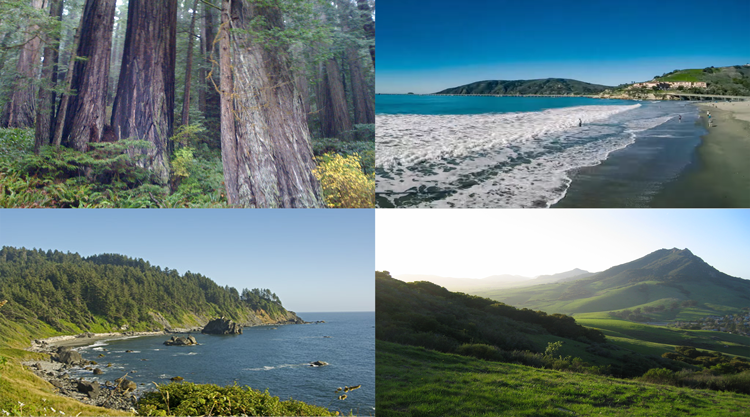Left side: Old Growth Redwoods and the Redwood Coast - Bayside, CA. Right side: Avila Beach and Bishop Peak - San Luis Obispo, CA